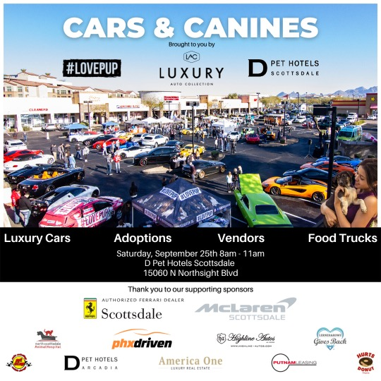 2021 Cars & Canines